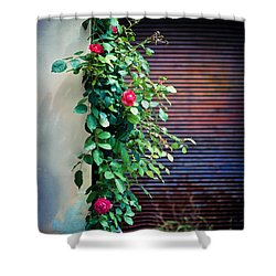 Moody Roses Shower Curtain by Silvia Ganora