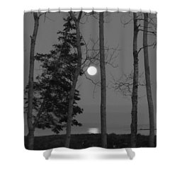 Shower Curtain featuring the photograph Moon Birches Black And White by Francine Frank