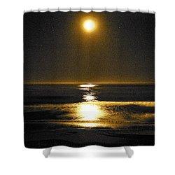 Moon Dust Shower Curtain