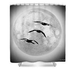 Moon Geese Shower Curtain by Brian Wallace