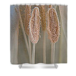 Moon Pistils  Shower Curtain by Chris Berry