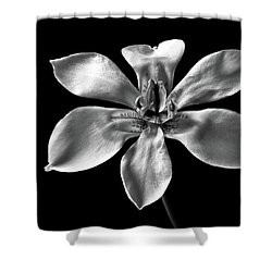 Shower Curtain featuring the photograph Morea In Black And White by Endre Balogh
