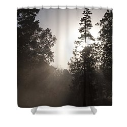 Morning At Valley Forge Shower Curtain by Bill Cannon