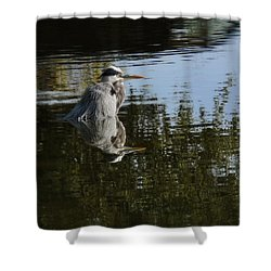 Shower Curtain featuring the photograph Morning Bath by Steven Sparks