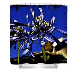 Shower Curtain featuring the photograph Morning Blooms by Clayton Bruster