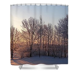 Morning Break Shower Curtain
