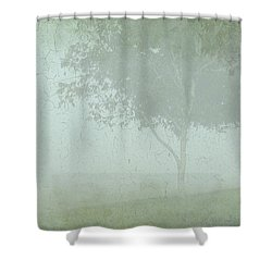 Morning Fog Shower Curtain by Judi Bagwell
