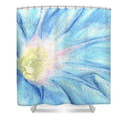 Morning Glorious Shower Curtain by Iris M Gross