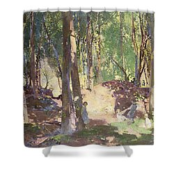 Morning In The Woods Shower Curtain by Harry Watson