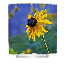 Shower Curtain featuring the photograph Morning Light by Nava Thompson