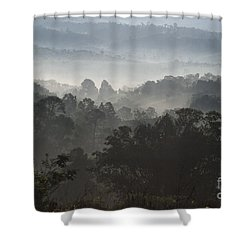 Morning Mist In Panama's Highlands Shower Curtain by Heiko Koehrer-Wagner