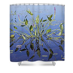 Morning Reflection Shower Curtain by Eunice Gibb