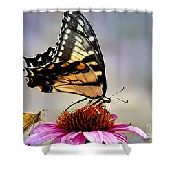 Shower Curtain featuring the photograph Morning Snack by Nava Thompson