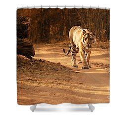 Shower Curtain featuring the photograph Morning Stroll by Fotosas Photography