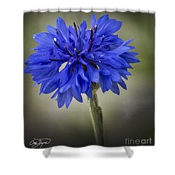 Morning Surprise - Artist Cris Hayes Shower Curtain