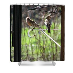 Shower Curtain featuring the photograph Morning Visitors by Rory Sagner