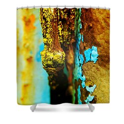 Moss And Rust II Shower Curtain by Toni Hopper