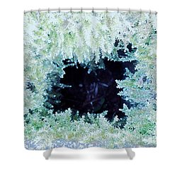 Shower Curtain featuring the photograph Moss Geode by Renee Trenholm