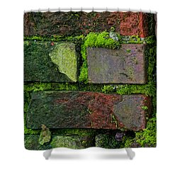 Shower Curtain featuring the digital art Mossy Brick Wall by Carol Ailles
