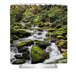 Mossy Creek Shower Curtain