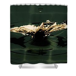 Shower Curtain featuring the photograph Moth Ripples by Jessica Shelton