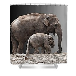 Mother And Baby Shower Curtain by Sheila Laurens