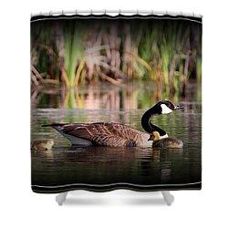 Mother Goose Shower Curtain by Travis Truelove