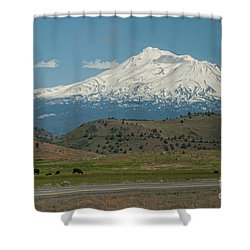 Mount Shasta Shower Curtain by Carol Ailles