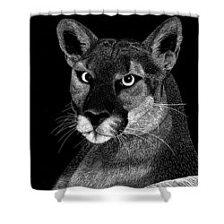 Mountain Lion Shower Curtain by Kume Bryant
