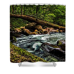 Mountain Stream Iv Shower Curtain by Christopher Holmes