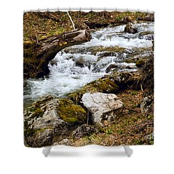 Shower Curtain featuring the photograph Mountain Stream by Les Palenik