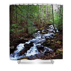 Shower Curtain featuring the photograph Mountain Stream by Paul Mashburn