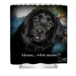 Mouse---what Mouse Shower Curtain