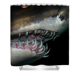 Mouthy Shower Curtain