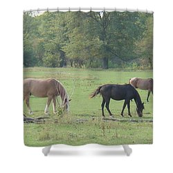 Shower Curtain featuring the photograph Mowing The Lawn by Bonfire Photography