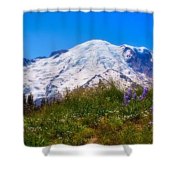 Mt Rainier Meadow With Lupine Shower Curtain by David Patterson