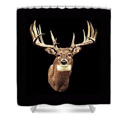 Mule Deer Head Shower Curtain