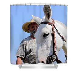 Mules At Benson Mule Day Shower Curtain by Travis Truelove