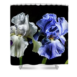 Multi Iris Shower Curtain by Rick Friedle