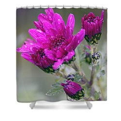 Mum With Raindrops Shower Curtain by Sharon Talson
