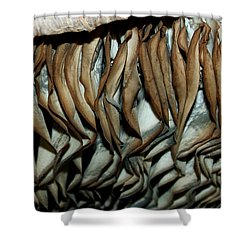 Mushroom Abstract Shower Curtain by Karen Harrison