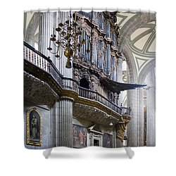 Shower Curtain featuring the photograph Music On High by Lynn Palmer