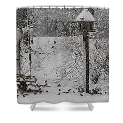 Shower Curtain featuring the photograph My Backyard by Donna Brown