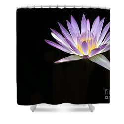 Mysterious Water Lily Shower Curtain by Sabrina L Ryan