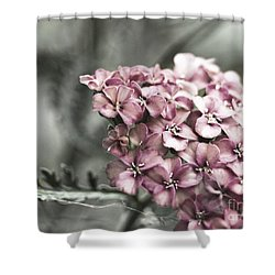 Mystic Yarrow Shower Curtain