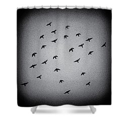 Mystical Formation Shower Curtain