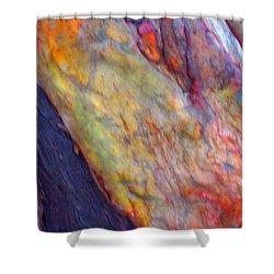 Shower Curtain featuring the digital art Mystics Of The Night by Richard Laeton