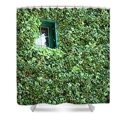 Napa Wine Cellar Window Shower Curtain