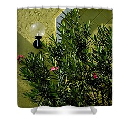 Naples Shower Curtain by Joseph Yarbrough