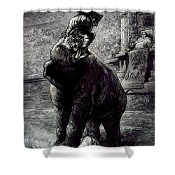 Nast: Spoils System Shower Curtain by Granger